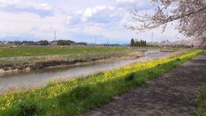 姿川サイクリングロード